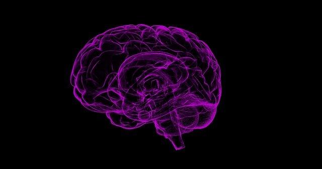 Naučte sa ovládať svoju pamäť