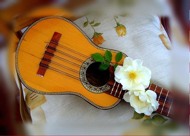 Obľúbený hudobný nástroj.jpg